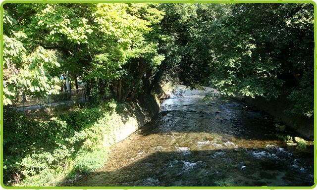 園路脇を流れる小川
