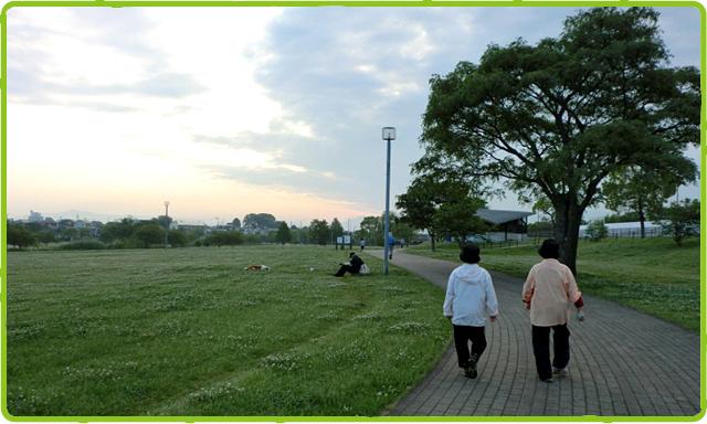 早朝からのお散歩