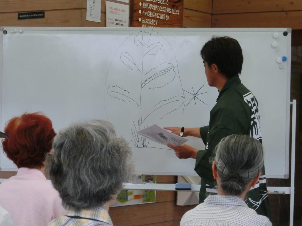 緑の剪定講座