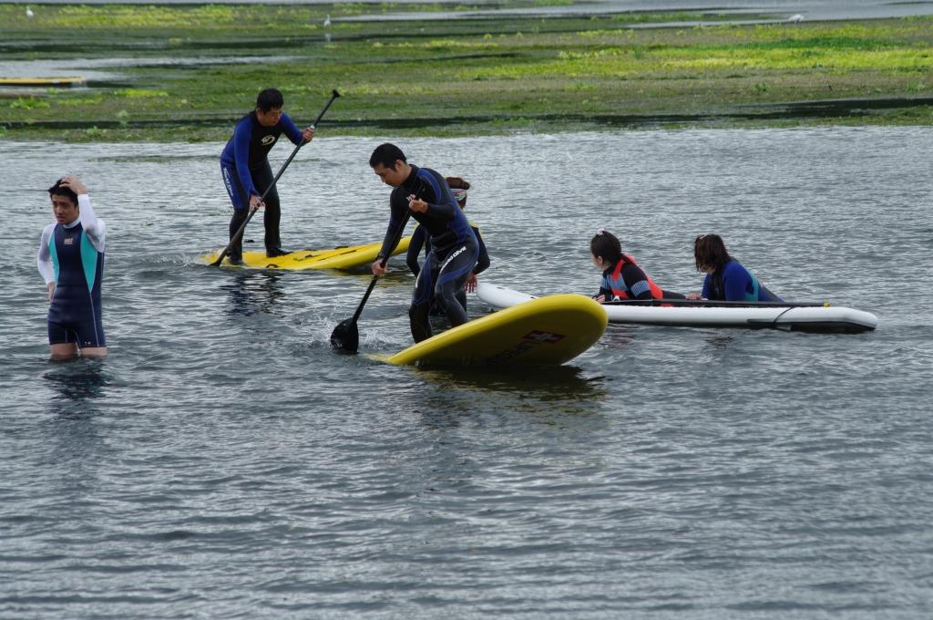 【順延となりました】「江津湖の水草清掃とSUPを楽しもう!」参加者募集!