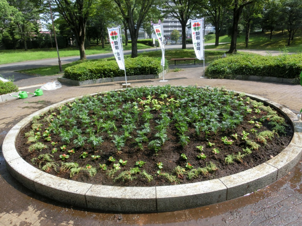 花壇プロジェクト