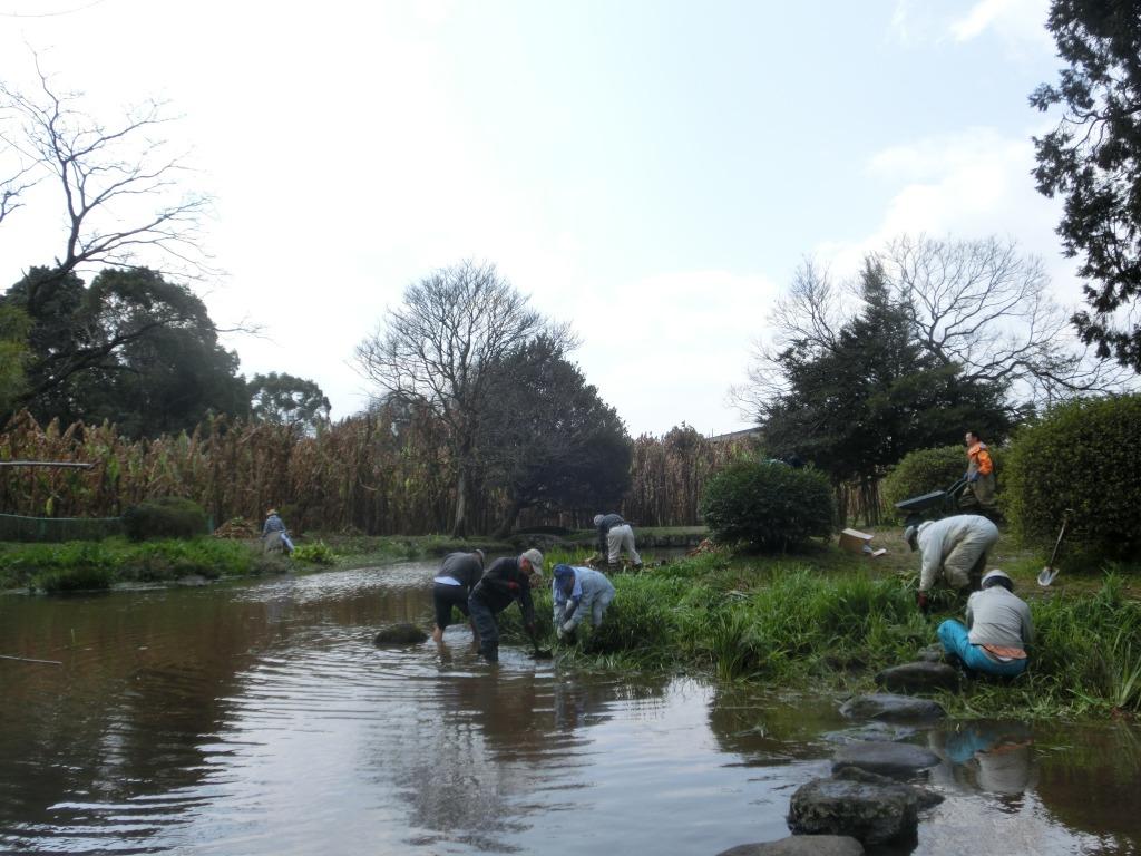 出水地区・日本庭園清掃ボランティア活動