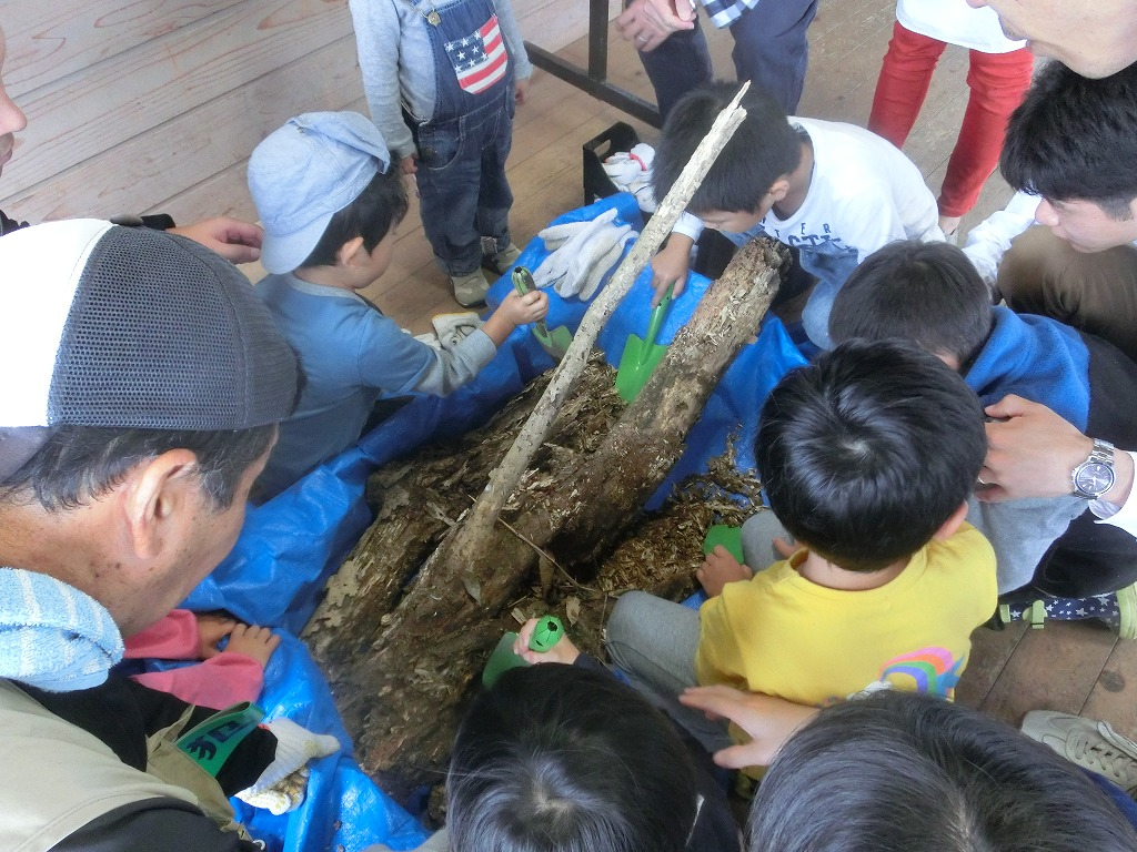 わくわくえづっ子塾『江津湖の生き物環境プログラム』